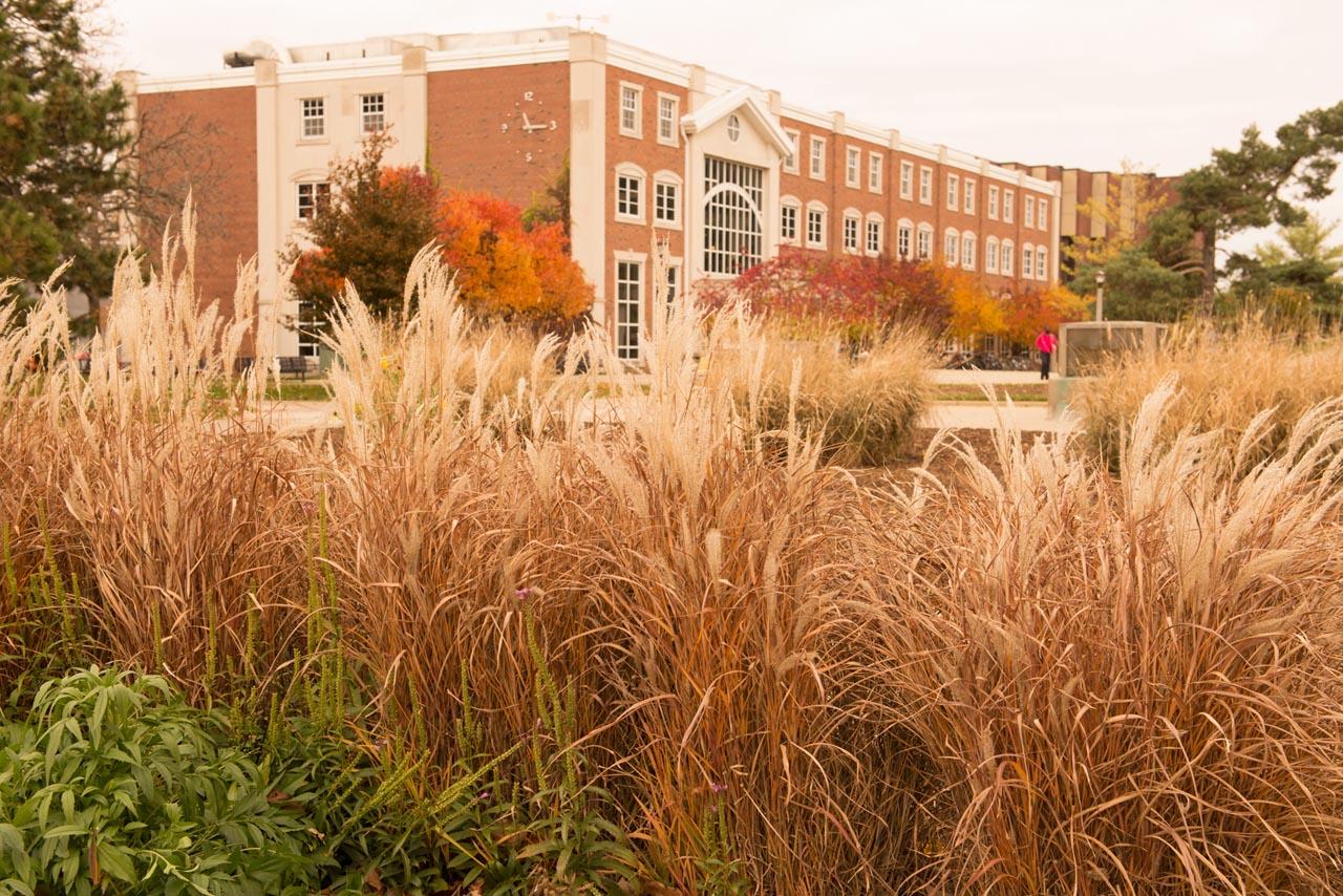 Fall on ISU's Campus