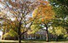 Fell Hall, made of bricks, sitting on the tree-covered Quad