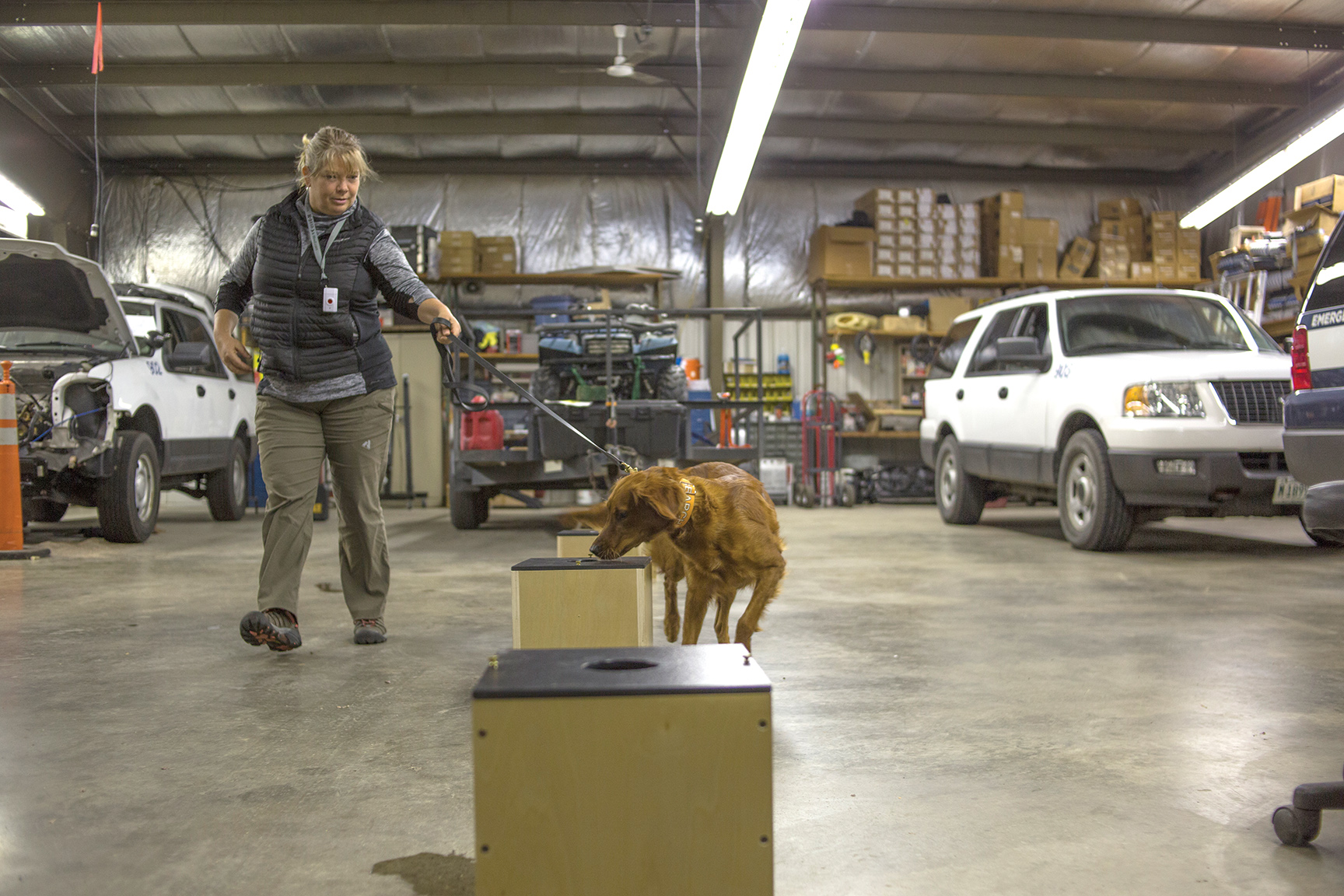 Client and mentor Joan Brehm puts Jessie through a training exercise designed to search for a target odor.