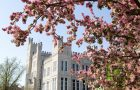Image of Cook Hall with spring flowers starting to bloom