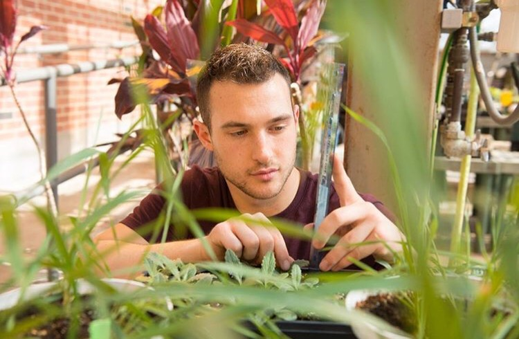 Brad Christin working with plants