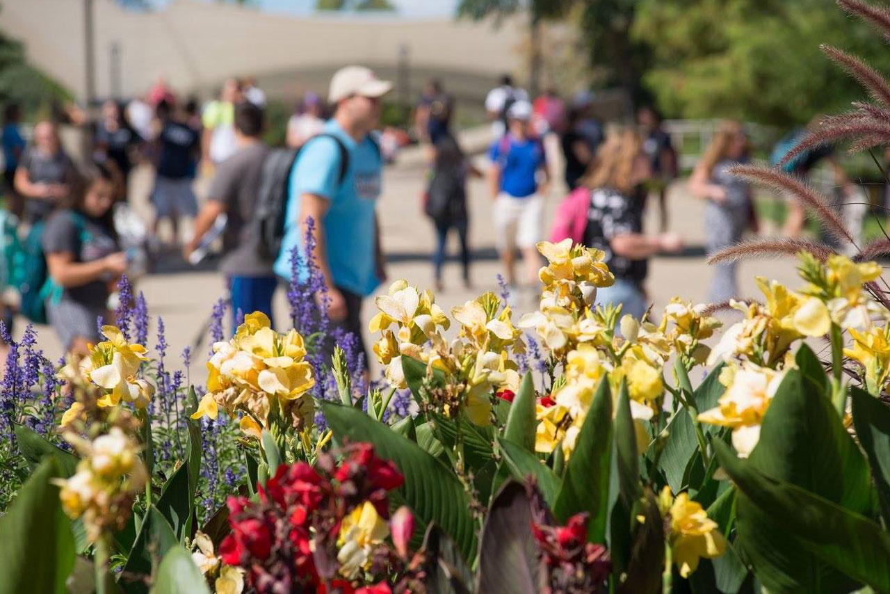 spring campus scene