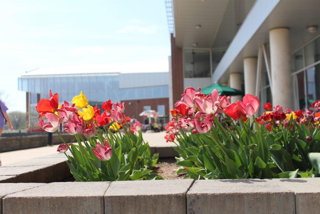FLowers outside Student Fitness Center