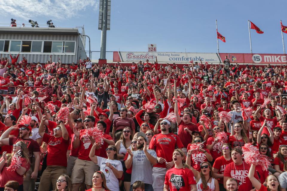 Crowd of Redbird fans