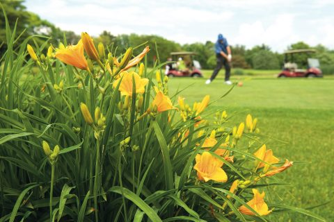 The Weibring Golf Club at Illinois State University has achieved designation as a certified Audubon Cooperative Sanctuary.