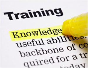 Document with highlighter with the following words: Training Knowledge useful abilities backbone of