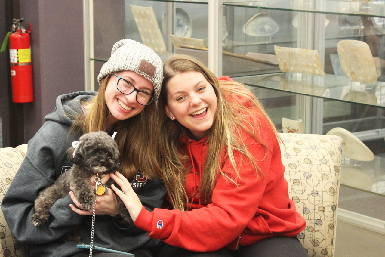 Smiling students posing with therapy dogs