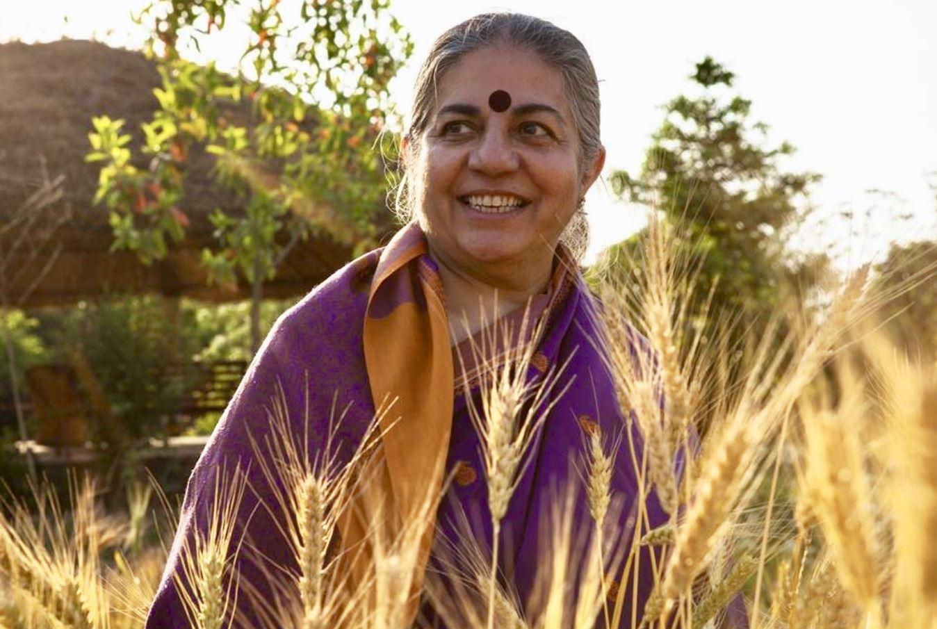 Vandana Shiva in a field of wheat