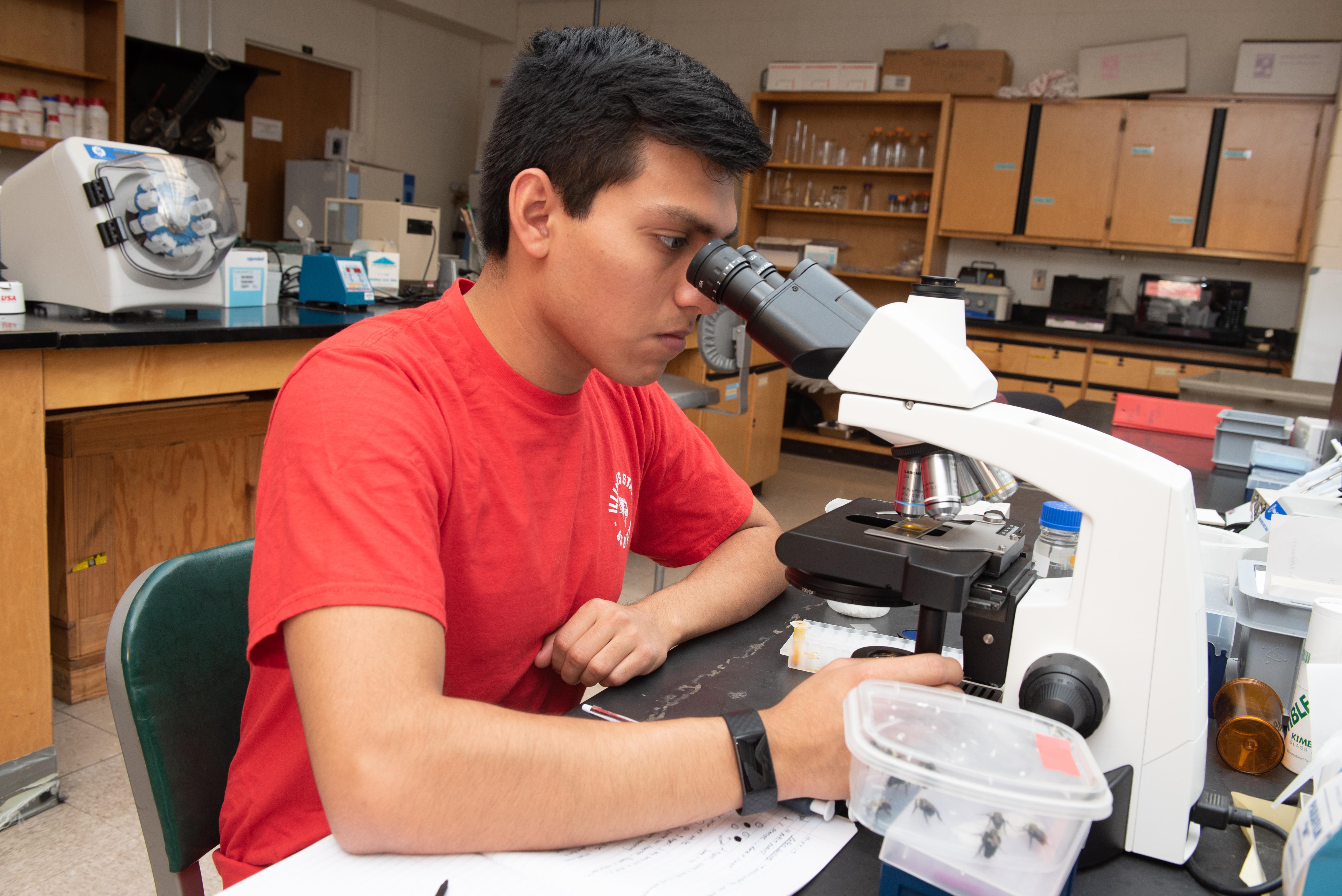 Abe Martinez in the lab