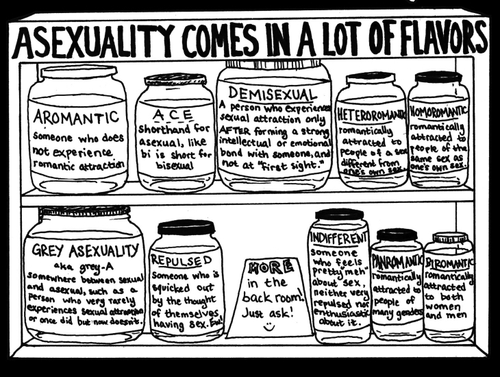 Drawing of shelves with title Asexuality Comes in a Lot of Flavors with jars labeled with variations of asexuality, including aromantic, demisexual, heteroromantic, and indifferent