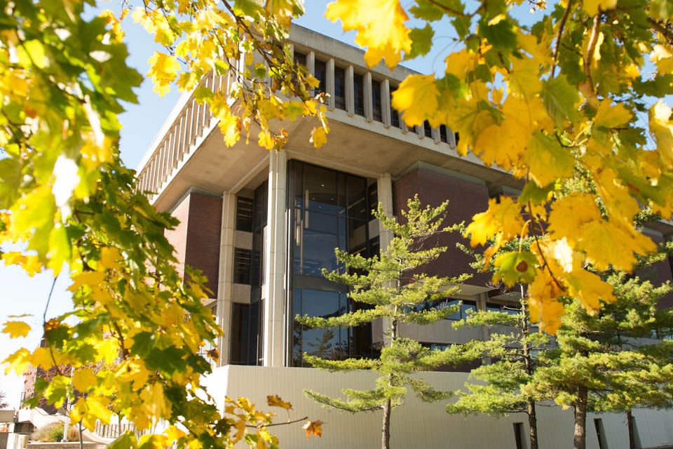 Fall leaves in front of Miner Library