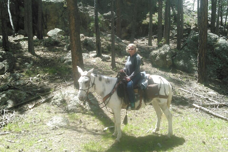 woman riding mule