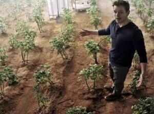 "Matt Damon shows his garden on Mars in the 2015 sci-fi movie ""The Martian"""