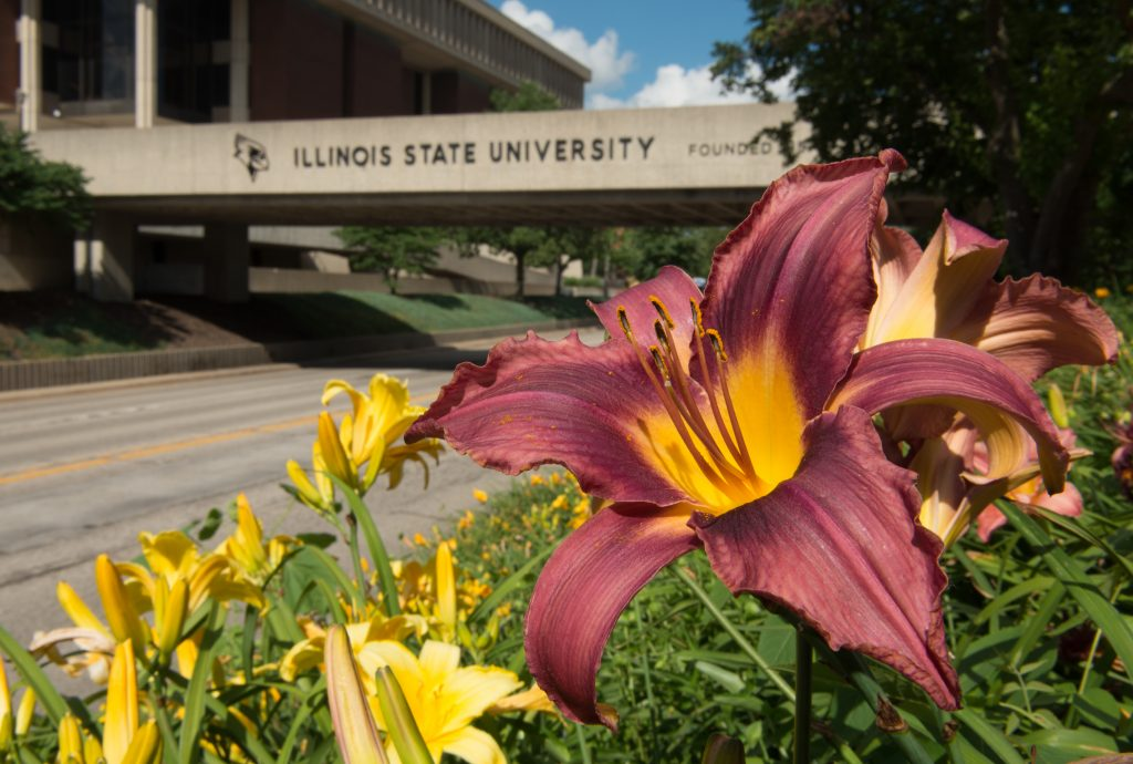 Illinois State University campus with flowers