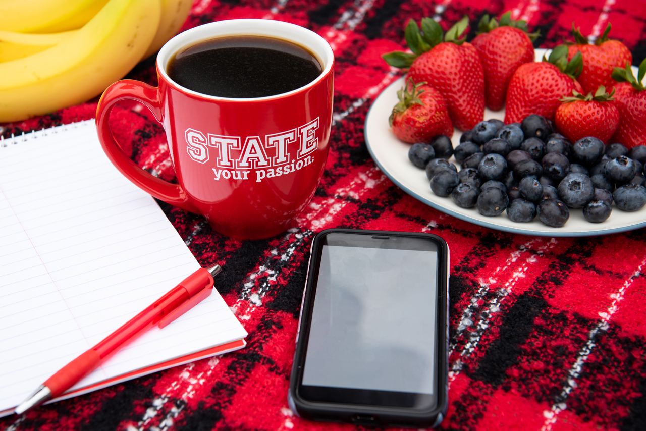 pad of paper, phone, cup and fruit on blanket