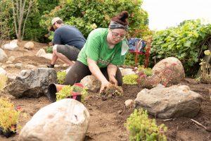 Jaylen Janes plants in the Rock and Roll garden