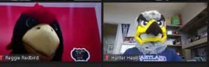 Reggie Redbird and Hunter Hawk mascots