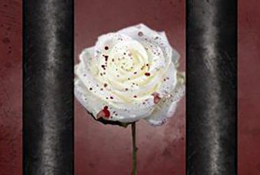 Artistic blood-splattered white rose behind prison bars.