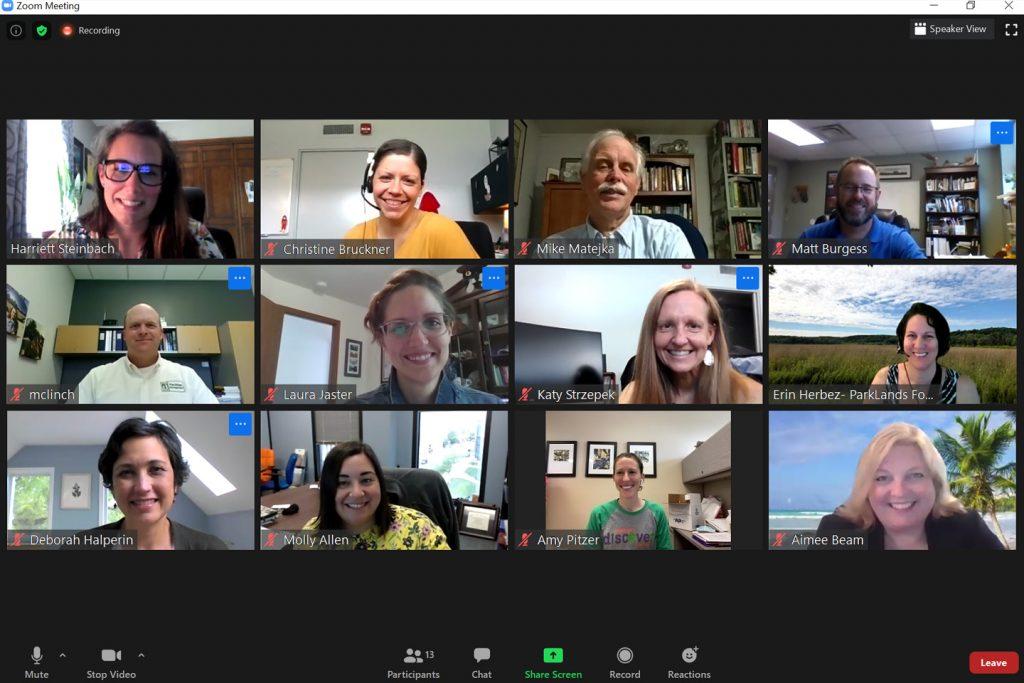 screenshot of an online meeting through Zoom