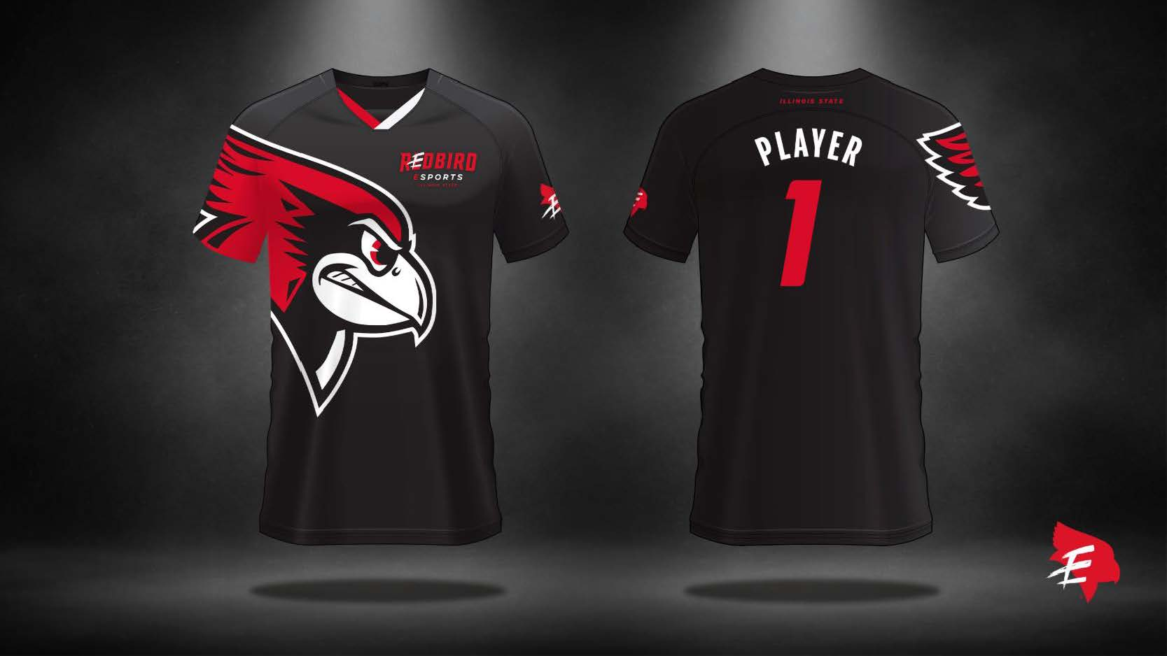 "Design, Environmental Graphics (Bronze): ""The Vault""—Illinois State University Esports Gaming Space designed by Evan Walles for the Redbird Esports program."
