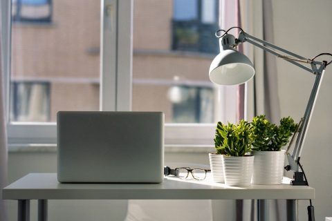 Scene in an aparment showing a desk in front of a window with a laptop and plants next to a lamp