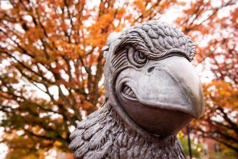 Redbird head bust