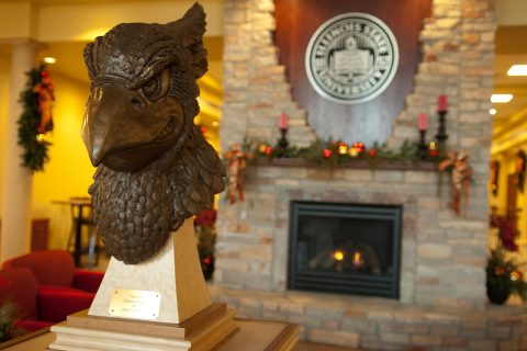 bust of redbird head in front of fireplace