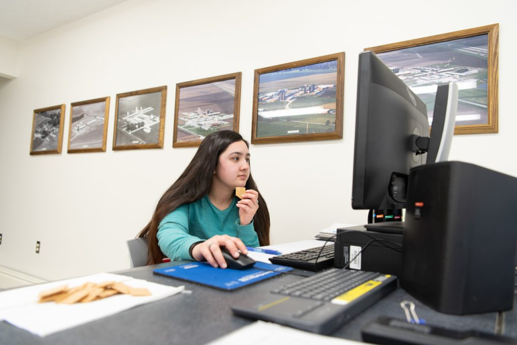 Julissa Navarrete works on a computer in the conference center to update the blood sample collection schedule for recently born lambs.