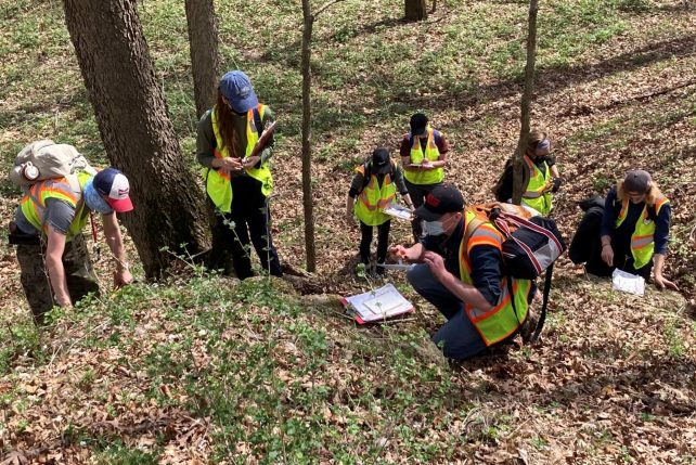 Distinguished Professor of Geology Dr. David Malone's students mapping the distribution of rocks and sediments. (Photograph by David Malone)
