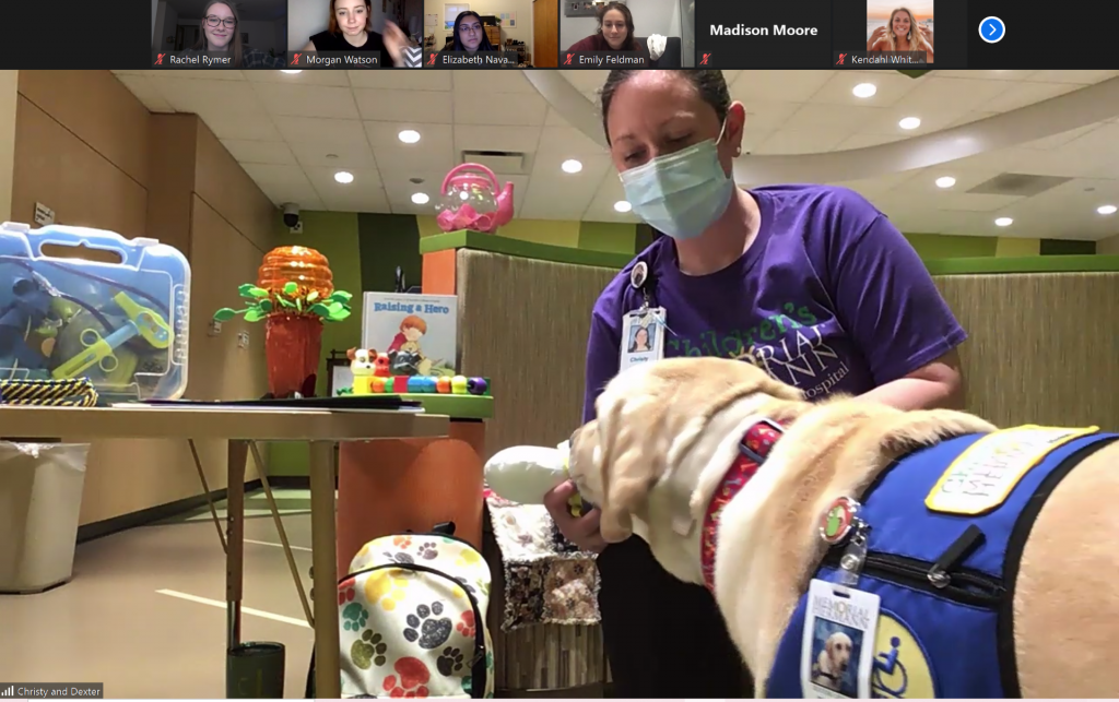 zoom meeting with demonstration