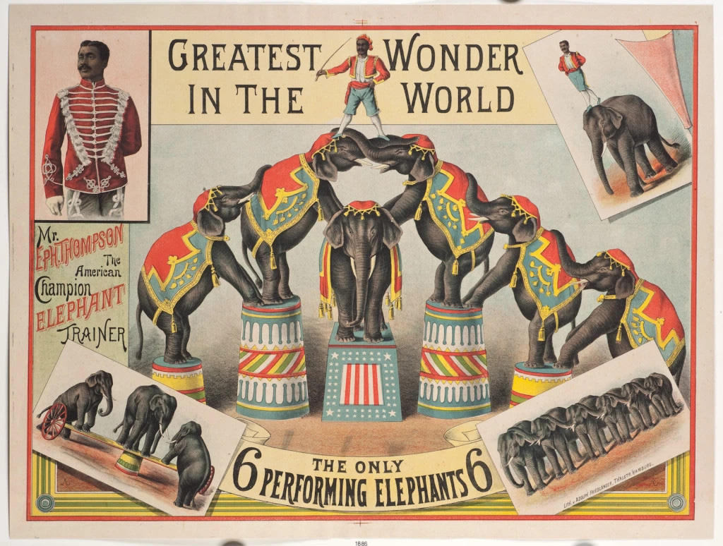"""A circus poster featuring Mr. Eph. Thompson the American champion elephant trainer. Text on the poster says """"The Greatest Wonder in the World. The only 6 performing elephants. Lithograph 1886 courtesy Rainer Lotz. https://jeffreygreen.co.uk/140-eph-thompson-the-elephant-trainer-1859-1909/"""