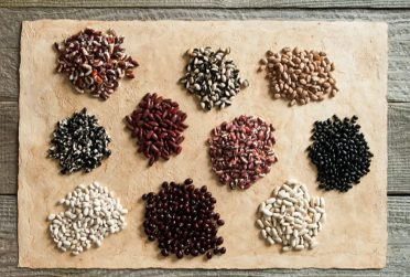 small piles of seeds