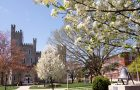 An outdoor photograph of the Illinois State University Quad including flowering trees, Cook Hall, and the Old Main Bell