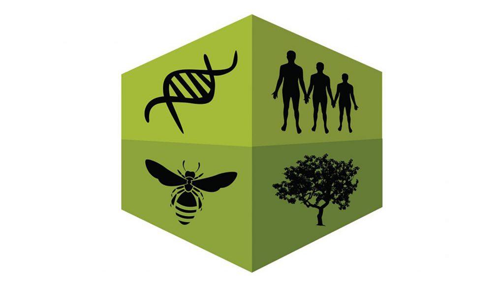 logo for biomath alliance