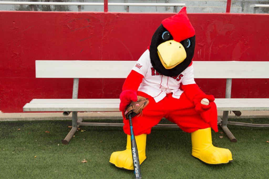 Reggie Redbird on bench with bat