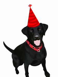 Illustrated image of Sage wearing a party hat