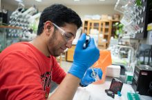 Shariq Zaman in the laboratory where he spent the summer on a research project examining the parastic disease Leishmania.
