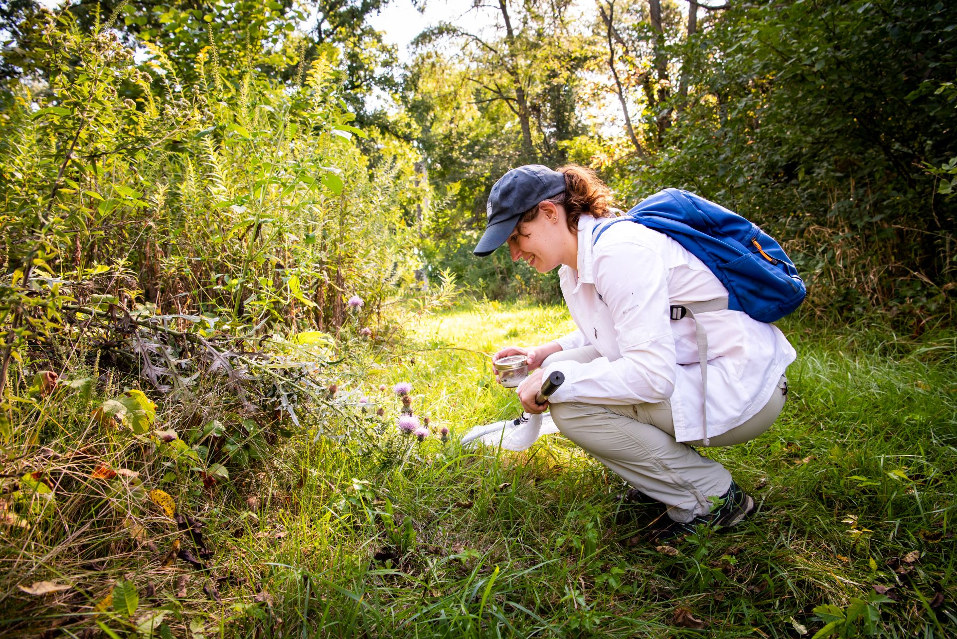 Third-year graduate student Elyse McCormick takes a field trip to Parklands' Lexington Preserve to study insects in Distinguished Professor Dr. Steven Juliano's Entomology course.
