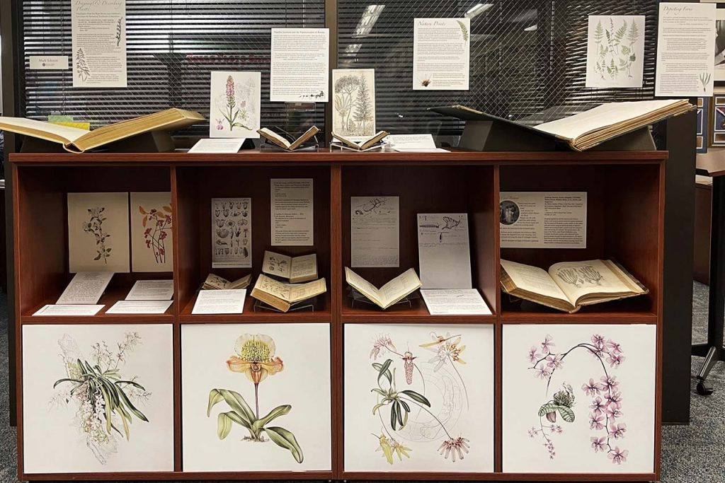 A photograph of an exhibit display in the Reading Room of Milner Library's Special Collections Department with prints and books on display