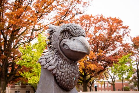 redbird plaza statue of Reggie head in the Fall