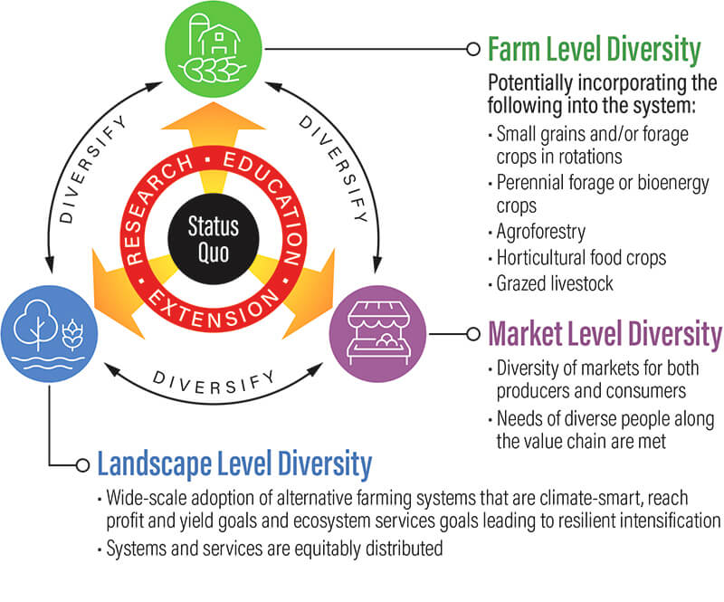 infographic with diversity of farm, market, and landscape connected by word diversify in a circle