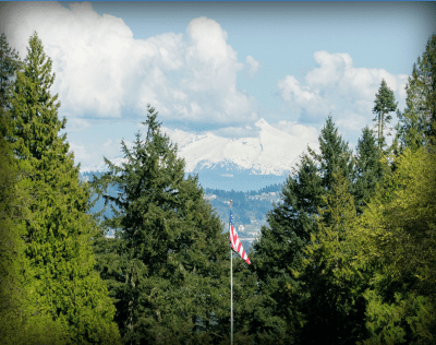 Trees and American flag. Snowy mountains in the background.