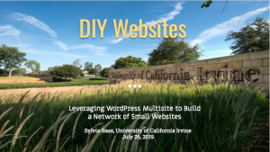 DIY Websites slide deck cover