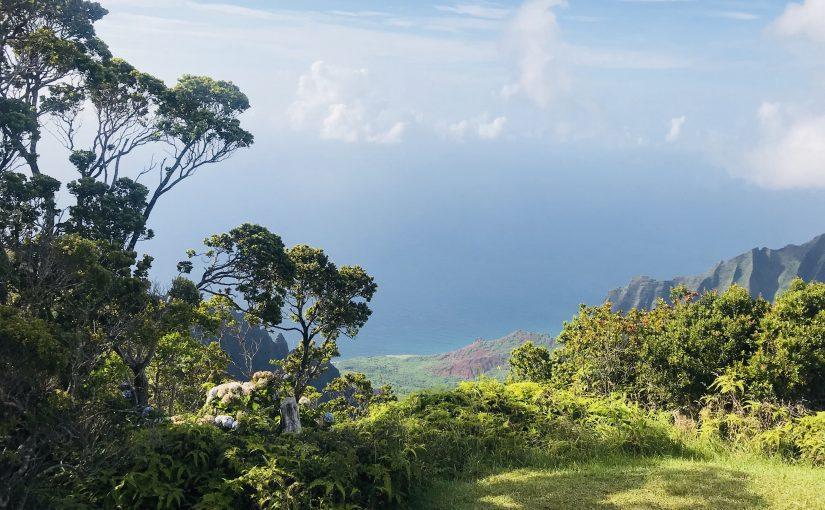 """""""Kalani"""": A So-Called 'Hawaiian' Story"""