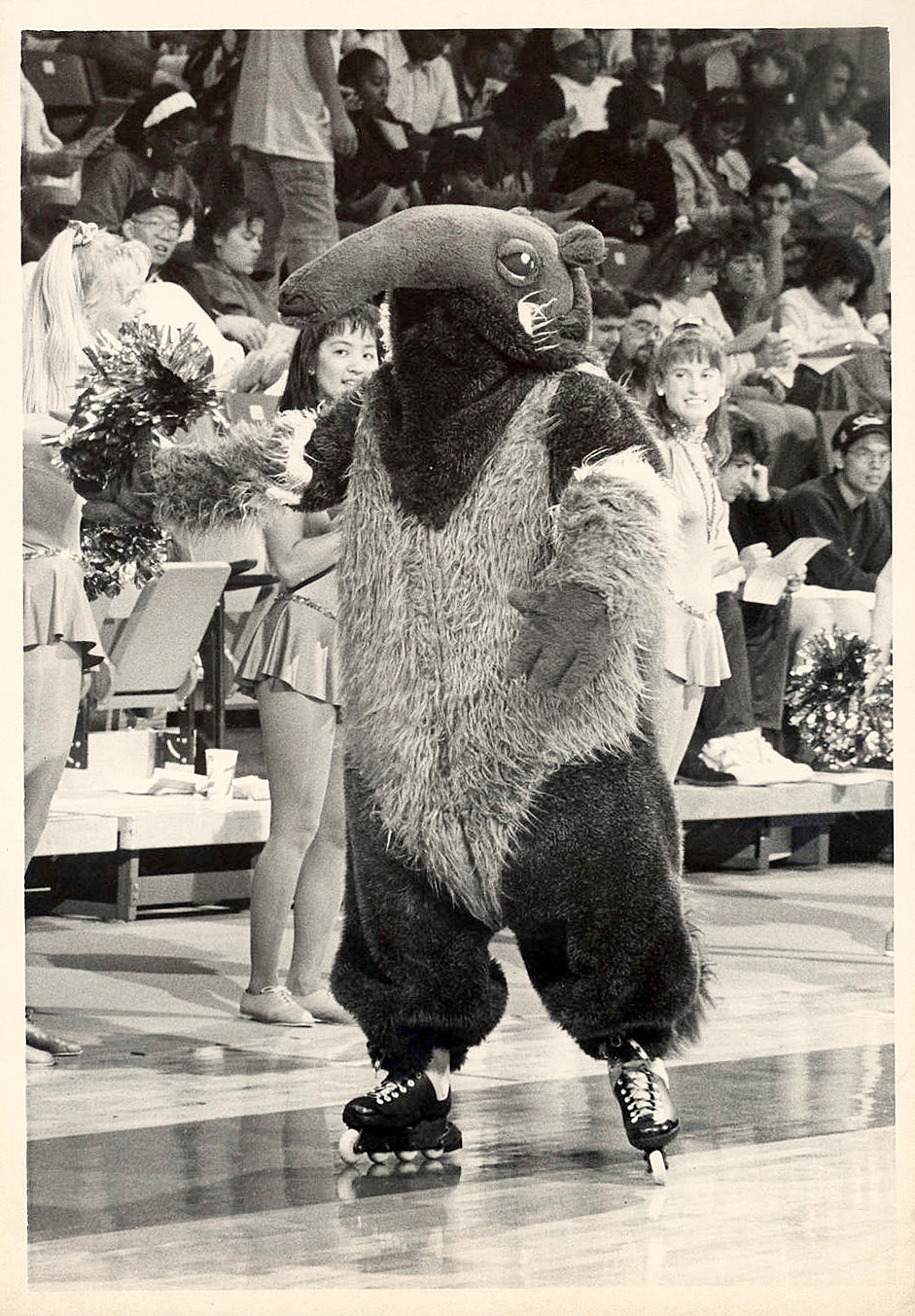 UC mascot Peter in 1994