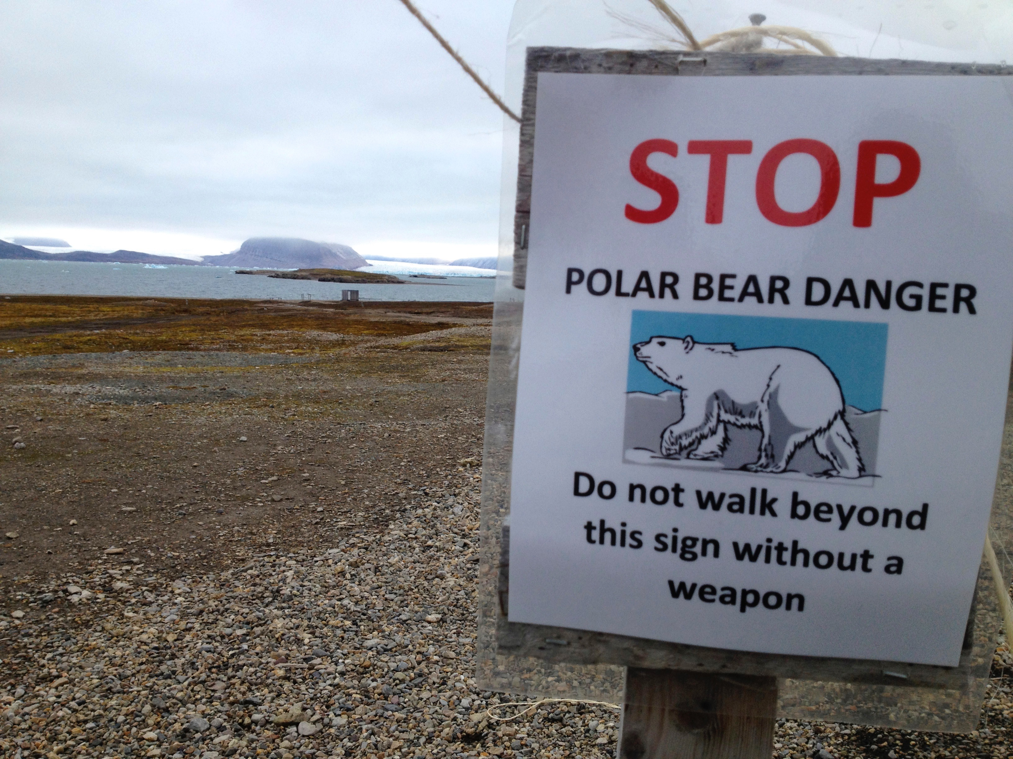 Some of my research in Norway was conducted in the research town of Ny-Ålesund on the island of Svalbard. They had polar bear warning signs posted around the town.