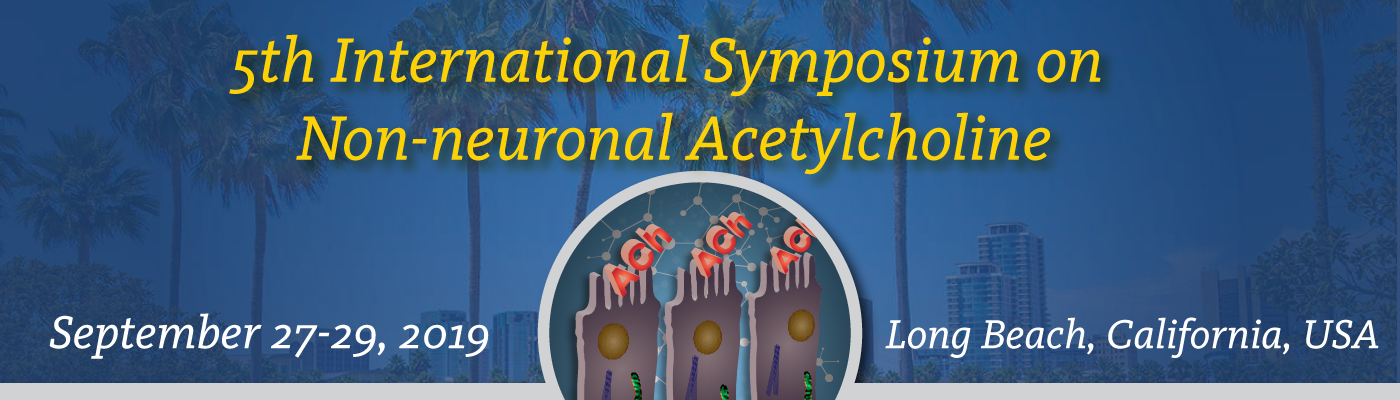 2019 Non-neuronal Acetylcholine International Symposium: From Bench to Bedside