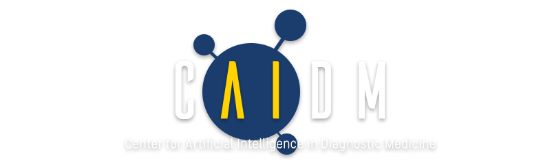 CAIDM_New_Logo_Formatted