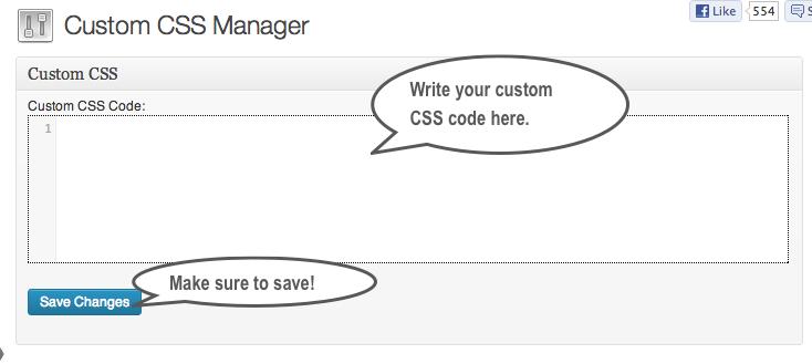 Custom CSS Manager code