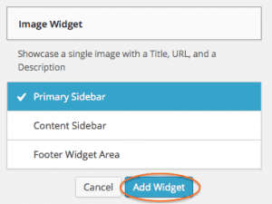 Add Image Widget